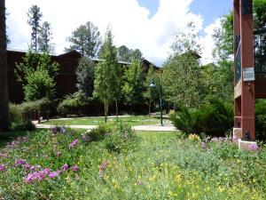 A garden outside Ruidoso River Resort Condos