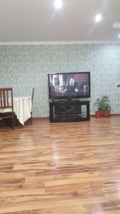 Телевизор и/или развлекательный центр в Апартаменты на Доватора