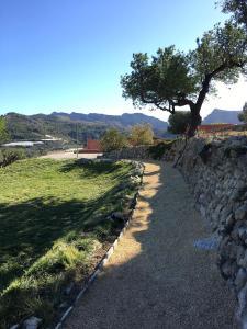 A garden outside B&B Finca Oliva