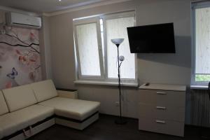 Телевизор и/или развлекательный центр в Studio on Zvezdnaya