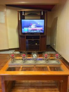 A television and/or entertainment center at Palawan Holiday Home near SM