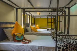 Cama o camas de una habitación en Zostel Jodhpur