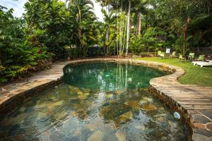 The swimming pool at or near Rainforest Castaways Resort and Spa