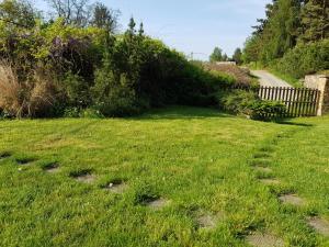 Vonkajšia záhrada v ubytovaní Garden View