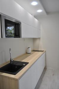 A kitchen or kitchenette at Apartamenty Feniks & Pegaz