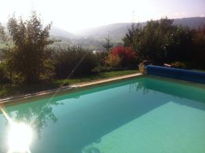 Der Swimmingpool an oder in der Nähe von Pension Haus Erika
