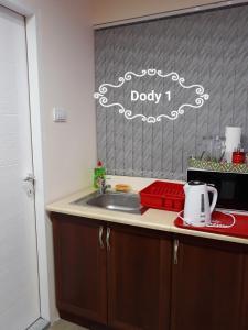 Kuhinja ili čajna kuhinja u objektu Dody Apartmani