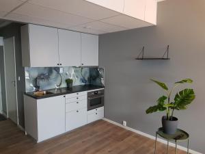 Ett kök eller pentry på Apartments Uppsala - Portalgatan