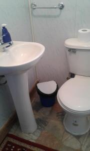 Un baño de Hospedaje Don Pedro