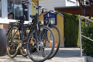 Radfahren an der Unterkunft Hotel Hecht Garni oder in der Nähe