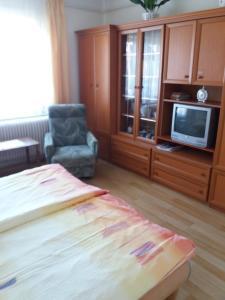TV a/nebo společenská místnost v ubytování Judit Vendégház