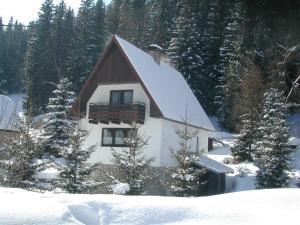 Chalet Helena v zimě