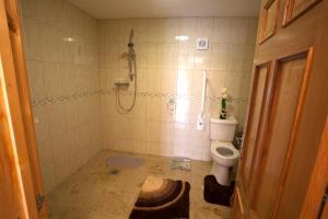 A bathroom at Winchfawr Lodge