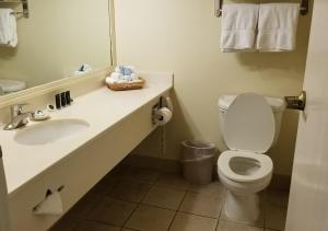 A bathroom at Cherry Tree Inn and Suites