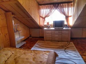 Телевизор и/или развлекательный центр в Vacation home U Iry