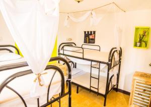 A bunk bed or bunk beds in a room at The Purpose Hostel