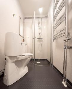 A bathroom at Abisko Hostel