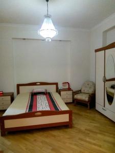 Cama ou camas em um quarto em Apartment Samed Vurgun st.