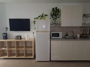 A kitchen or kitchenette at CIW Hostel