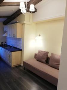 Кухня или мини-кухня в Residence Turgenev