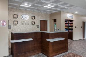 Lobi ili recepcija u objektu Comfort Suites - South Austin