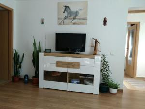 A television and/or entertainment center at Otopeni Airport Apartment