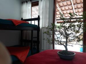 Uma ou mais camas em beliche em um quarto em Casa Wilson