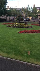 A garden outside Rosehill Guest House