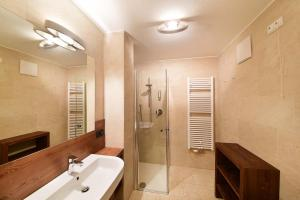A bathroom at Ariston Dolomiti Residence