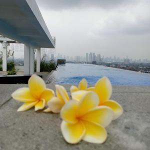 The swimming pool at or close to PSW Antasari Hotel