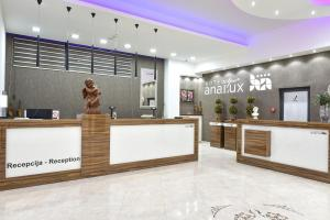 Лобби или стойка регистрации в Hotel Ana Lux Spa