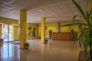 El vestíbulo o zona de recepción de Hotel Maier