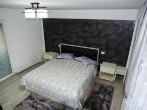 Un pat sau paturi într-o cameră la Moldi Moldovita Mocanita