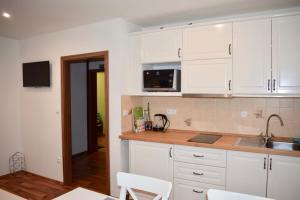 Kuchyň nebo kuchyňský kout v ubytování Penzion Chata pod sjezdovkou