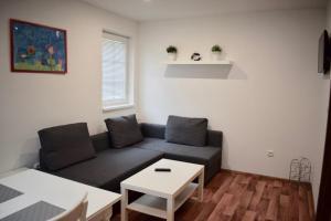 Posezení v ubytování Penzion Chata pod sjezdovkou