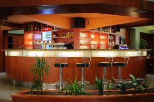 Lounge nebo bar v ubytování Hotel Harmonie