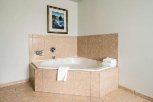 A bathroom at Quality Inn & Suites at Olympic National park