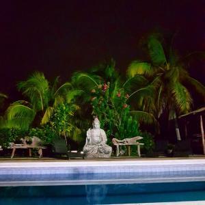 A piscina localizada em Playa Tranquilo B&B and Dive Shop ou nos arredores