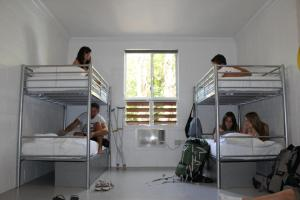 A bunk bed or bunk beds in a room at Port Douglas Backpackers