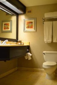 A bathroom at TI - Treasure Island Hotel & Casino