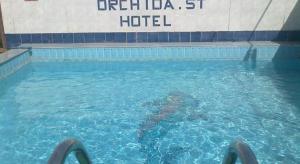 المسبح في فندق أوركيدا سان جورج أو بالجوار