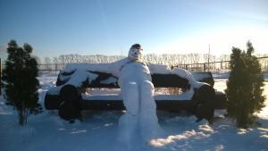 Конный двор зимой