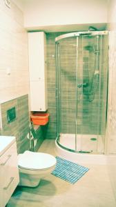 Łazienka w obiekcie Apartamenty Topaz