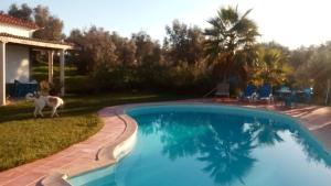 The swimming pool at or near Monte das Beatas - Alojamento Local