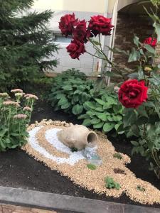 Сад в Гостиница ДеЖаВю