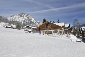 Landhaus Kaufmann during the winter
