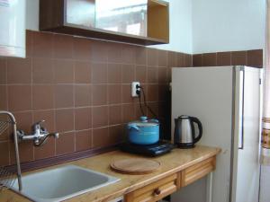 Кухня или кухненски бокс в Ваканционна къща Таневи