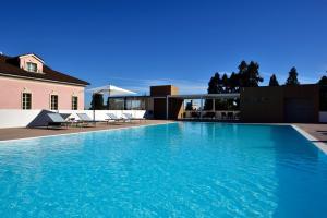 The swimming pool at or near Castello Dal Pozzo