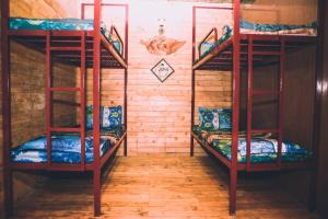 A bunk bed or bunk beds in a room at Rỗng Homestay
