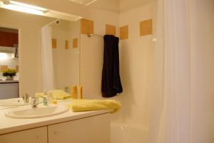 Salle de bains dans l'établissement Résidence Néméa Les Chalets d'Estive
